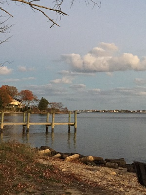 Coastal toms river